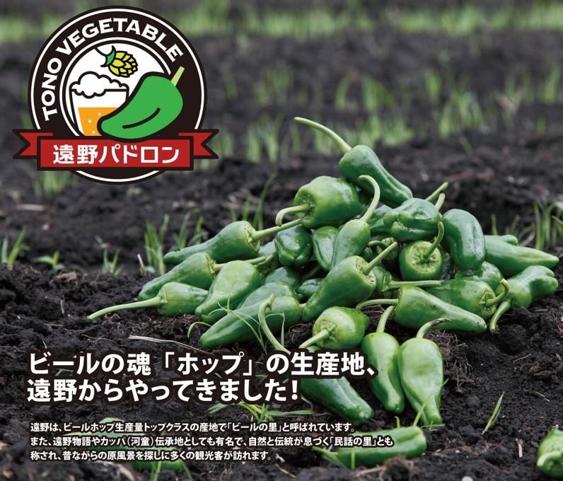岩手県遠野市生産の野菜パドロン